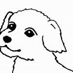 páginas para colorir cão