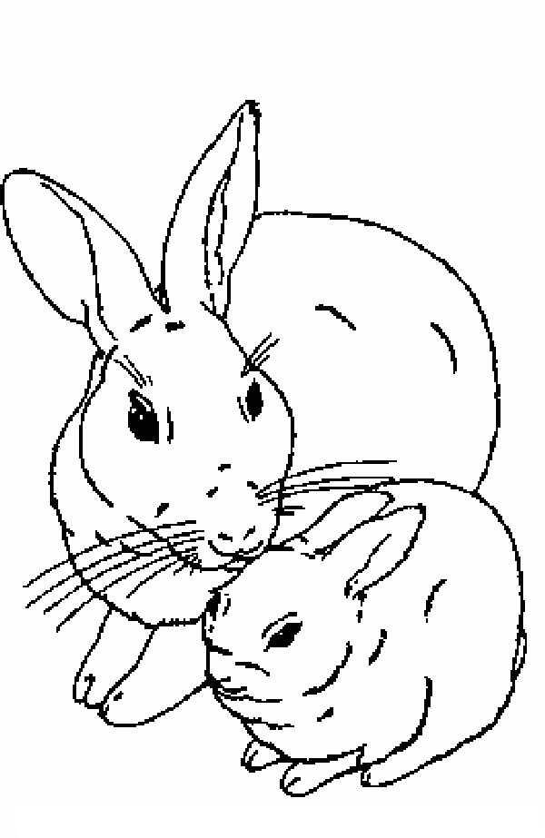 bany kaninchen zum aus malen und drucken : 1001 schone