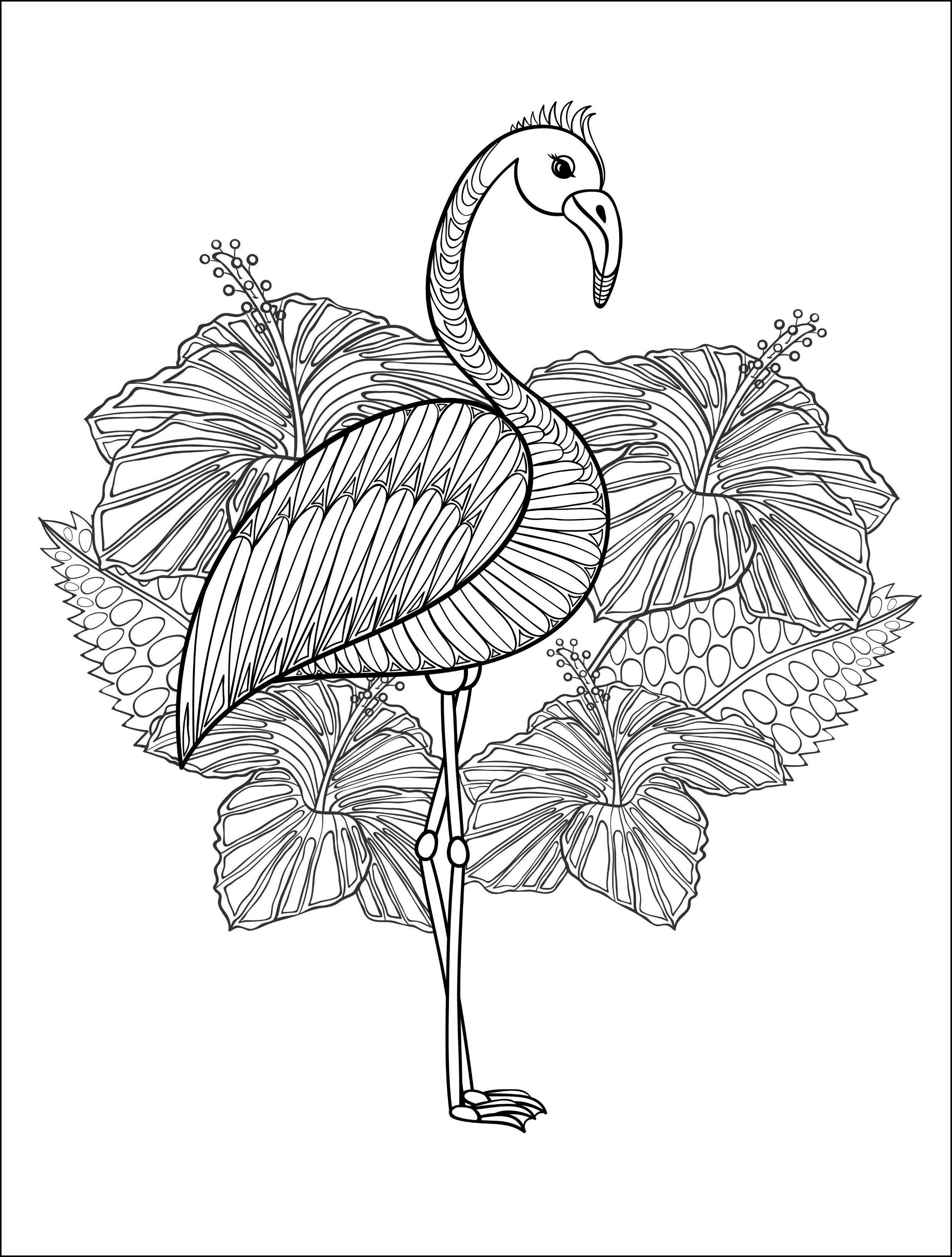 flamingo kostenlos malvorlagen windowcolor zum drucken