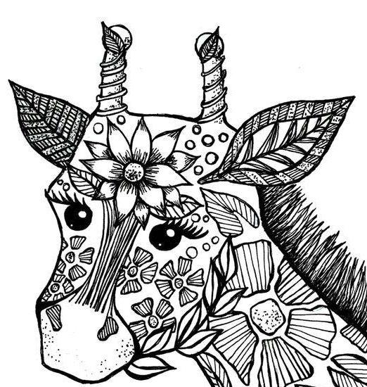 mandala tiere  tier mandalas für erwachsene kostenlos
