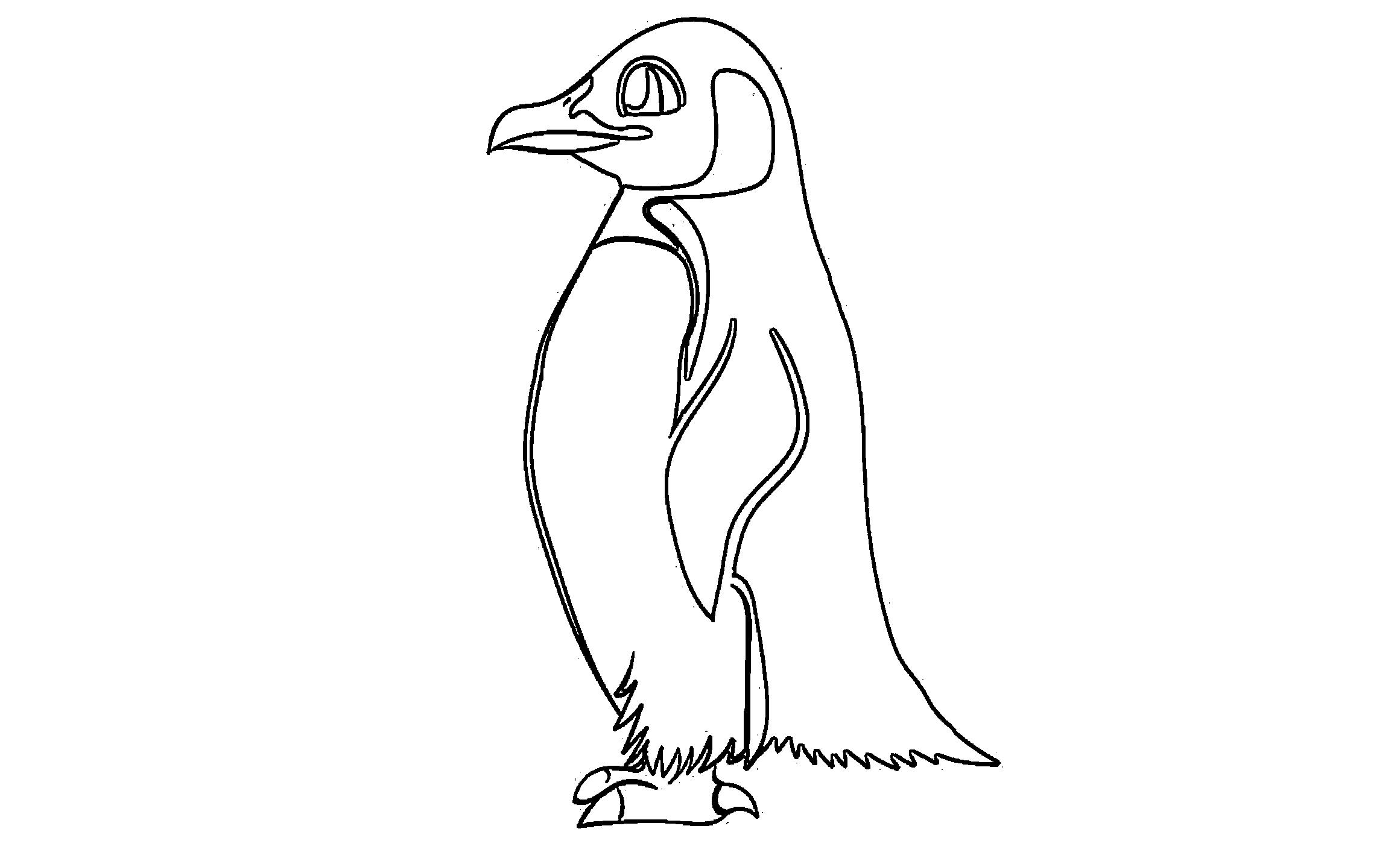 Pinguin Ausmalbilder Kostenlos Malvorlagen Windowcolor Zum Drucken