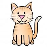 Kedi Nasıl Çizilir? Okul Öncesi Kolay Kedi Çizimi – Adım Adım Çizim Öğreniyorum